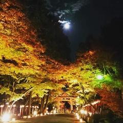 明智光秀ゆかりの地 比叡山坂本 秋のライトアップ