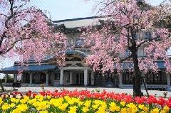 びわ湖大津館桜&チューリップまつり【pickup】
