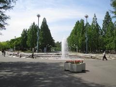 緑地 公園 鶴見