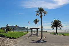 海浜 公園 白谷