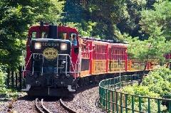 嵯峨野 トロッコ 列車 予約 ネット